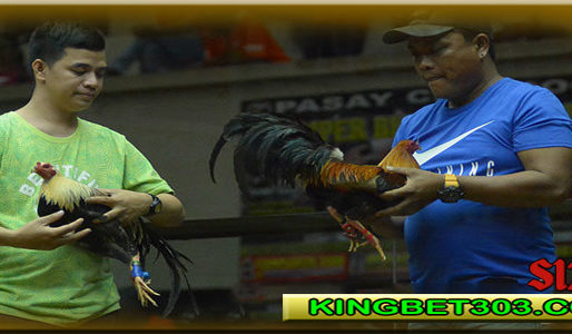 Agen Sabung Ayam Online S128 Live Terbaik Di Indonesia
