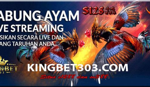 Kings1288: Situs S1288 Sabung Ayam Online Terbesar Dan Terpercaya
