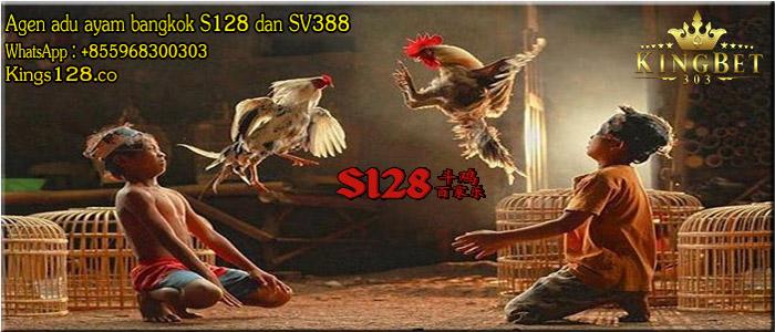 Kisah Fenomenal Sabung Ayam S128 Cindelaras
