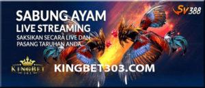 Promo Menarik Sv388 Sabung Ayam Online Agen Terpercaya