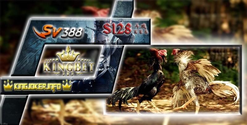 Daftar Adu Ayam S128 Terpercaya Bisa Mainkan Secara Online?