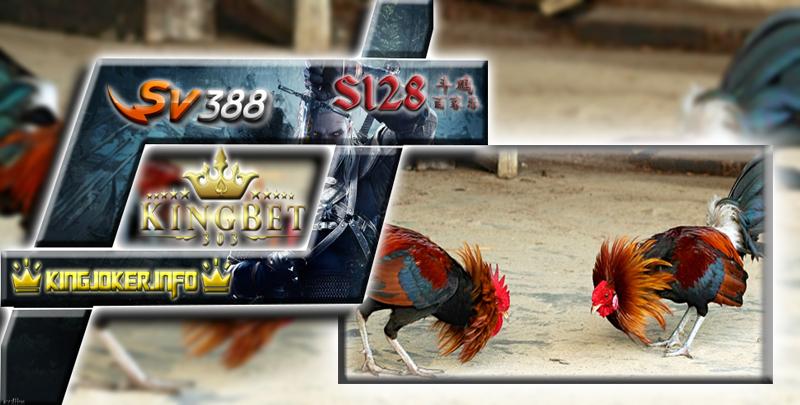 Login S128 Aktif Untuk Permainan Sabung Ayam Online Ini Dia!