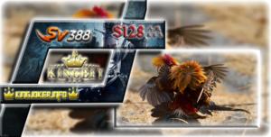 Agen Sabung Ayam S1288 Terpercaya Dan Terbaik Seindonesia