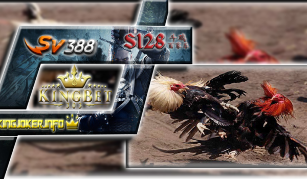 Agen Sabung Ayam Sv388 Terpercaya Kemenangan Dan Taruhan