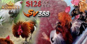 Daftar S1288